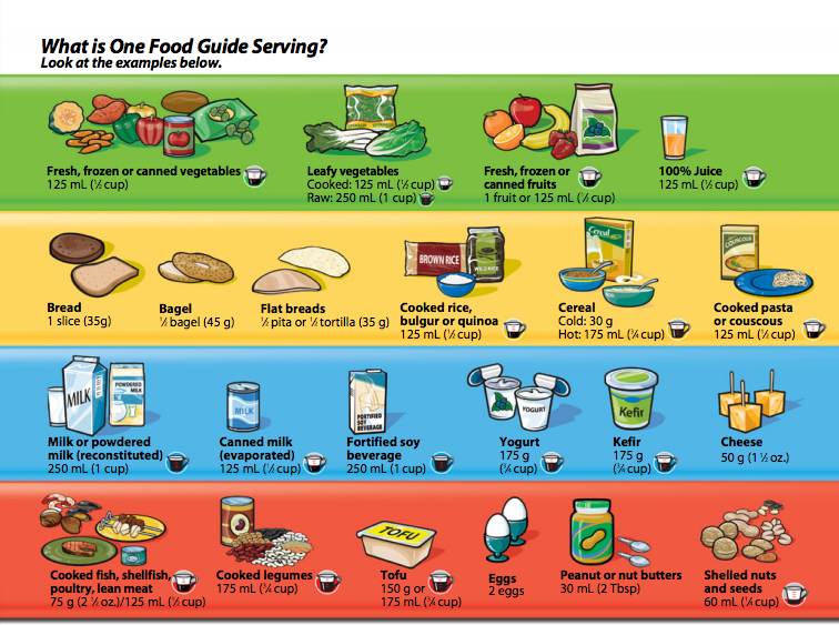 Canada food guide 2015 chart