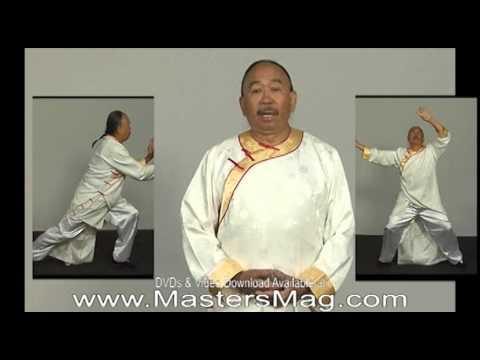 Shaolin 18 lohan hands pdf