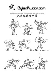 kung fu training manual pdf